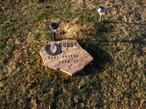 Buddy the Horse Grave Site